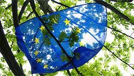 Europaflagge in einem Baum
