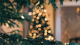 Beleuchteter Weihanchtsbaum