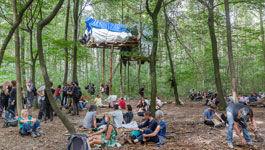 Demonstranten im Hambacher Wald unter einem Baumhaus