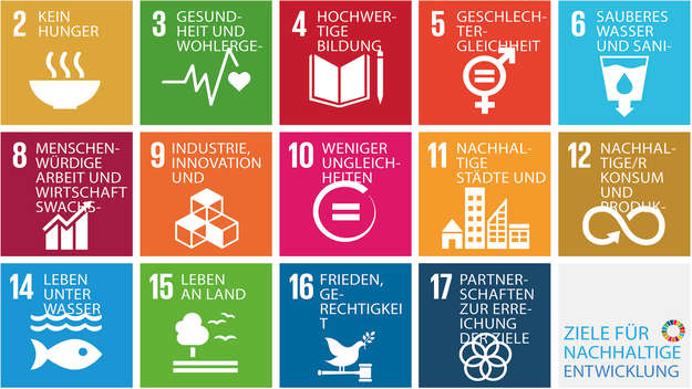 Bunte Grafik zu den Sustainable Development Goals